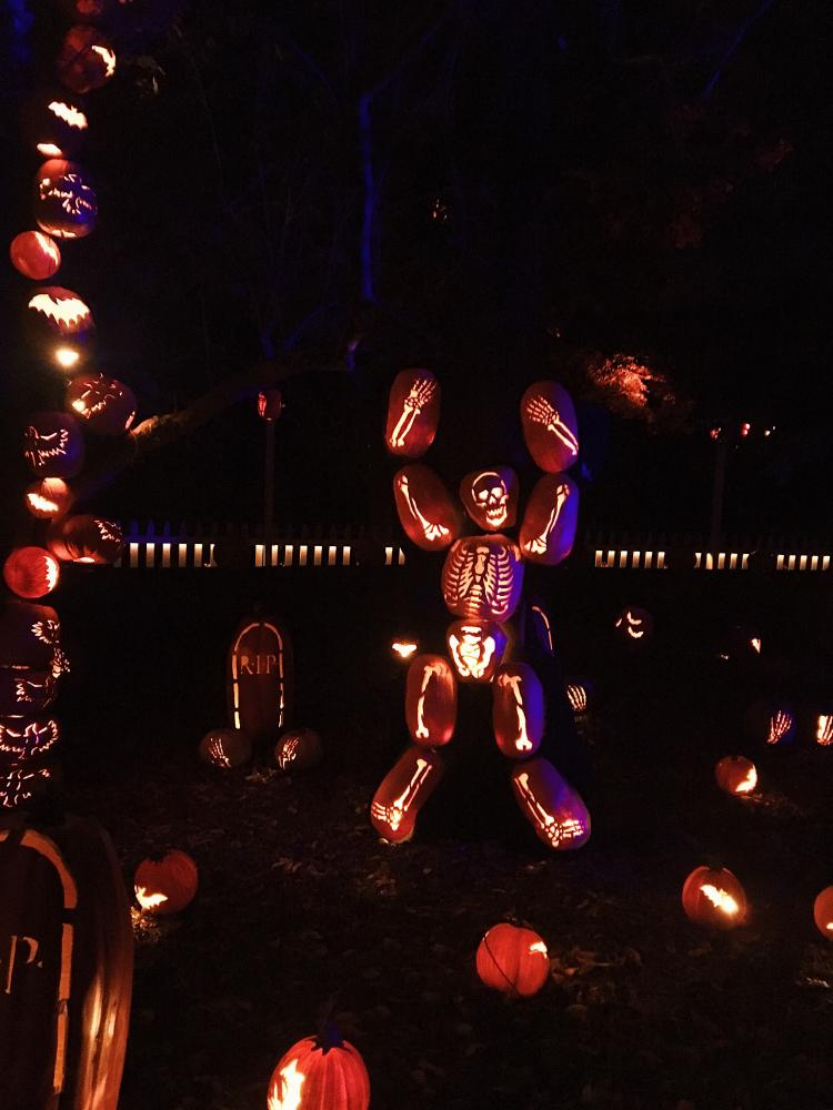 The+famous+Pumpkin+Blaze+at+Van+Cortlandt+Manor+in+Croton-on-Hudson+attracts+thousands+of+visitors+every+fall+season.+