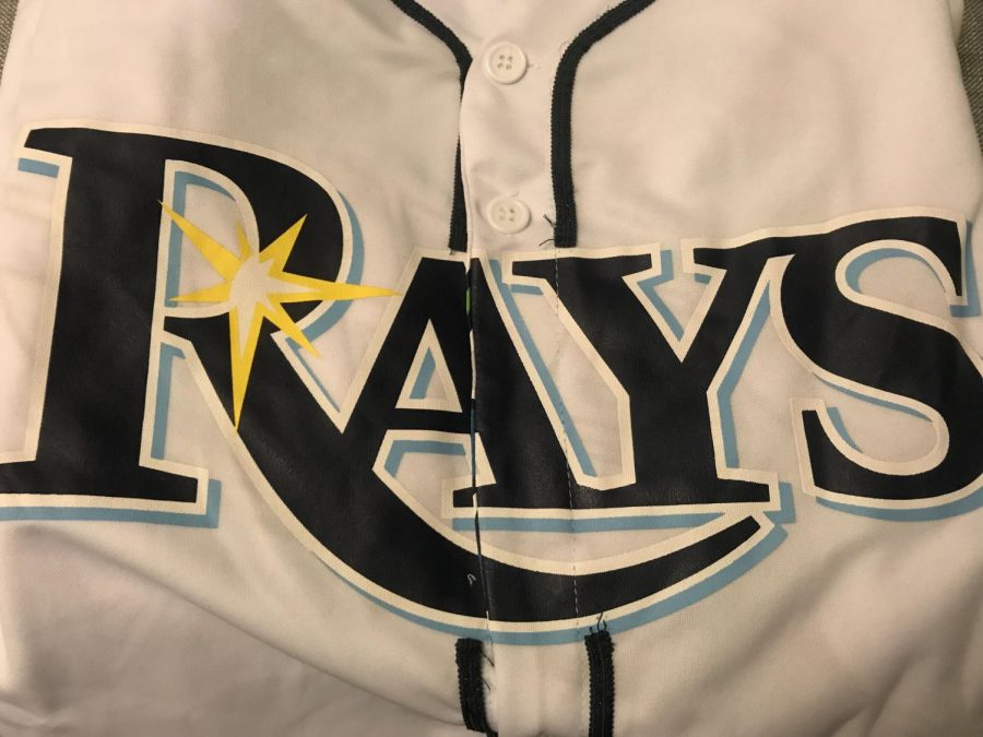 Tampa Bay Rays Internship Day 4