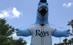 Tampa Bay Rays Internship Day 6